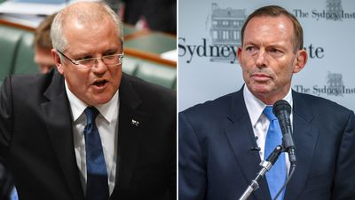 Scott Morrison slams Abbott's calls for immigration cuts