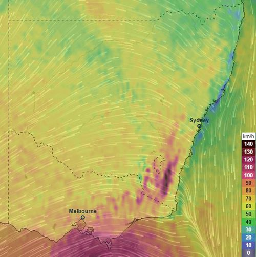Wind gusts could reach up to 120km/h this weekend for areas in south-eastern New South Wales and parts of Victoria.