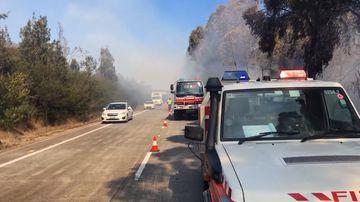 Firefighters tackling blaze along Cooranbong motorway