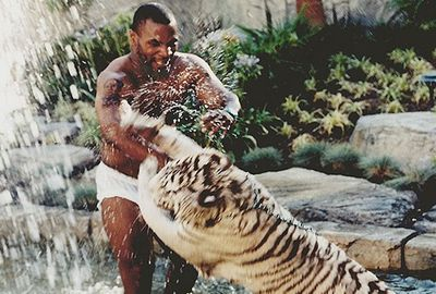 Mike Tyson once owned two white Bengal Tigers. (Supplied)