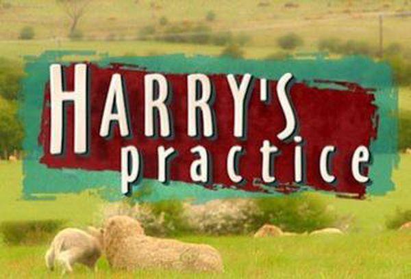 Harry's Practice