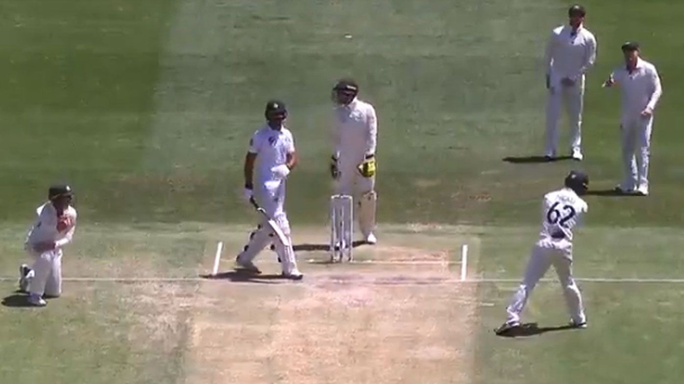 'What are you implying?': Warner calls out Labuschagne's sledge fail
