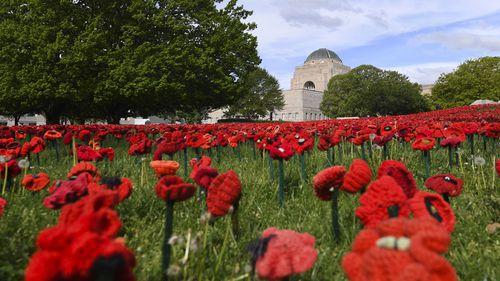A field of handmade poppies is seen in the sculpture garden of the Australian War Memorial in Canberra.