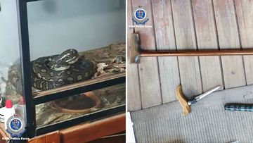News NSW Comanchero bikie member police raids python weapons drugs seized charges Central Coast Wyee
