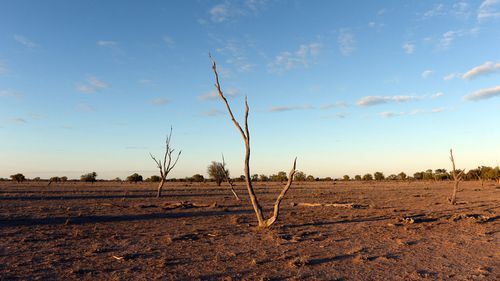 Drought risk to soar even at 1.5C