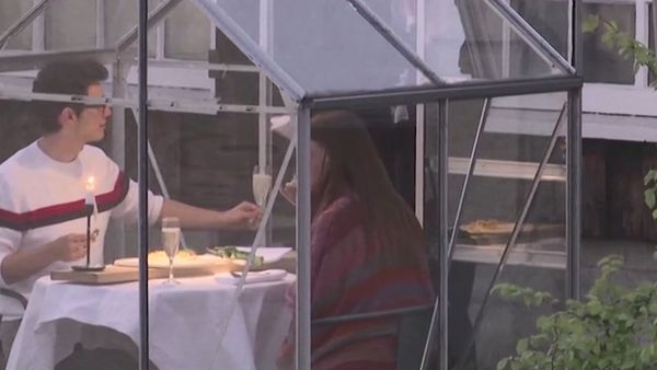 Dutch restaurant trials private greenhouses for social distancing