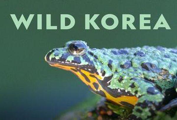 Wild Korea