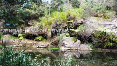 The location of the site is being kept secret to protect the art from vandals. (9NEWS)
