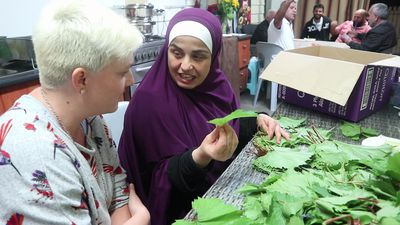 How to prepare vine leaves with Family Food Fight's the Shahrouk family
