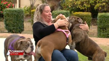 Queensland woman claims she is a female 'Dr Dolittle'