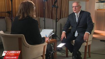 'How did you not know?': Grimshaw grills Morrison