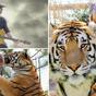 Tiger King: Joe Exotic's 10 wildest music videos