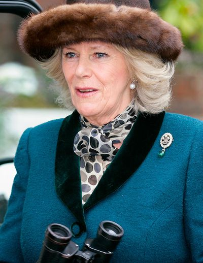 The Prince of Wales feathers brooch