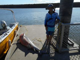 Jake was not expecting to see a shark and a crocodile so close up when his pop invited him fishing on the Proserpine River.
