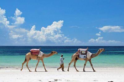 11. Diani Beach in Kwale County, Kenya