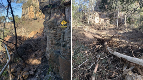 The site of the landslip was five minutes from the beginning of the track.
