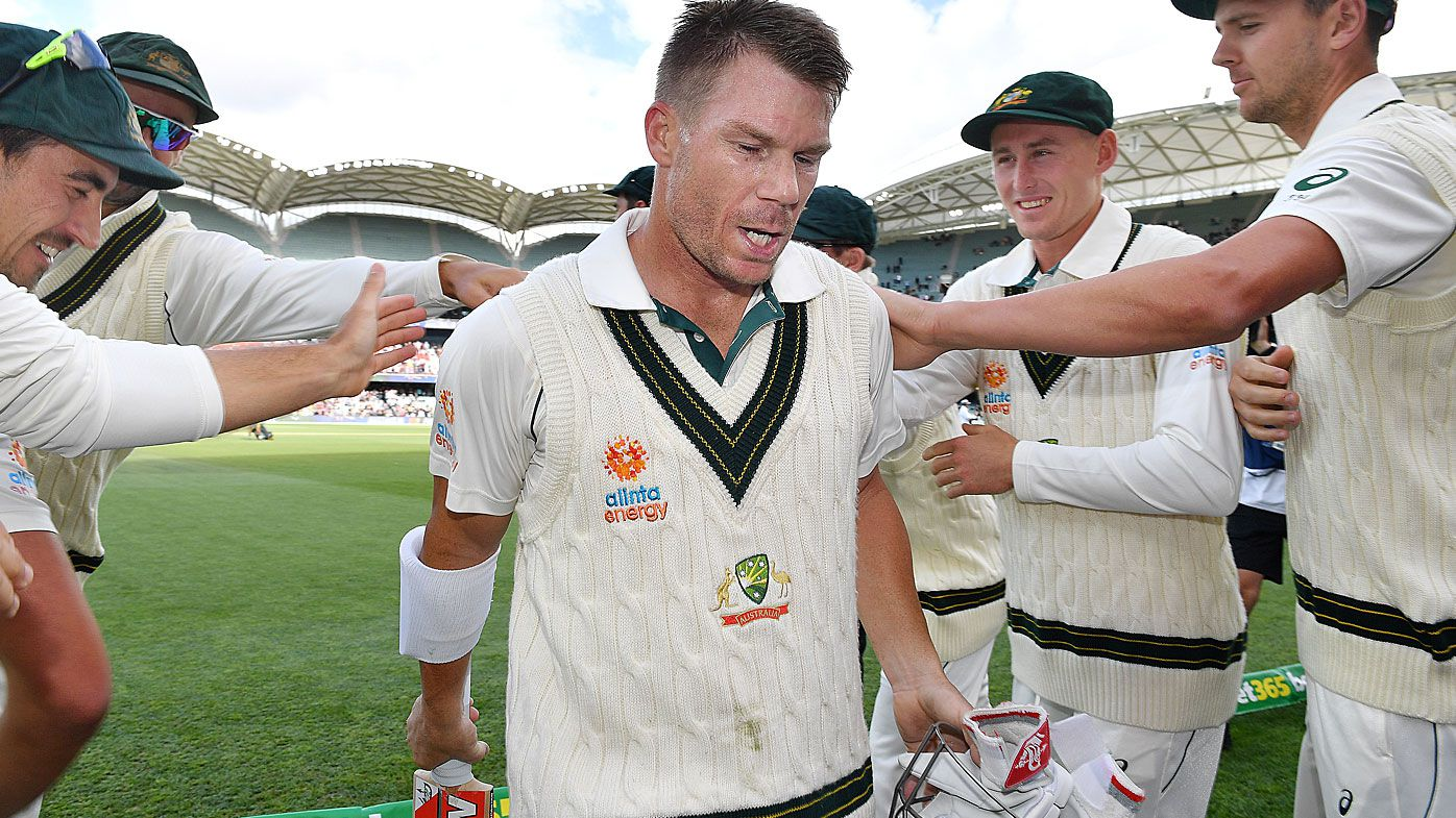 David Warner had a stunning knock in the second Test