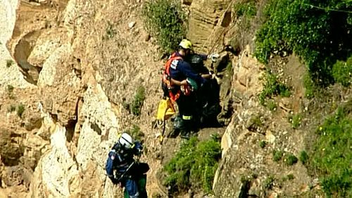 Hang glider rescued after becoming stranded on Sydney cliff