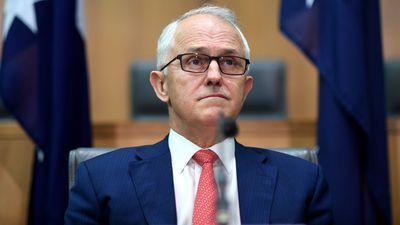 Turnbull reveals 'game-changing' energy guarantee