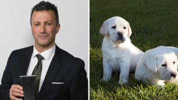 Sandro Cirianni: Former Guide Dogs Vic boss stole more than $200,00 from the charity.