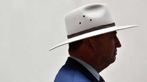 Former Deputy Prime Minister Barnaby Joyce has also split with former ally Malcolm Turnbull to back coal power. (AAP)