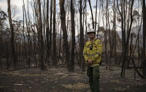Parts of Namadgi National Park reopened after bushfires, other areas closed for years