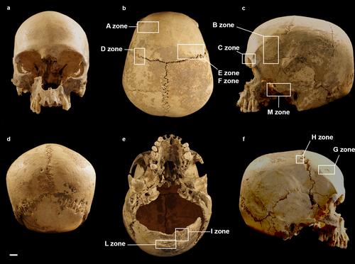 Marcel Loubens cave skull