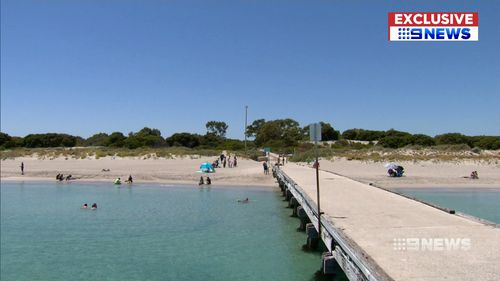 Witnesses said a fisherman had hooked the stingray before it stung the boy. (9NEWS)