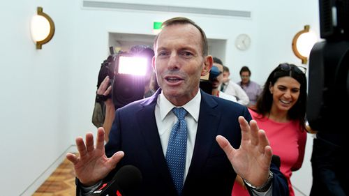 Former prime minister Tony Abbott at a press conference at Parliament House in Canberra in March, 2017. Photo: AAP