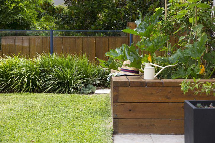 WINTER PLANTINGS, HERBS AND VEGETABLES