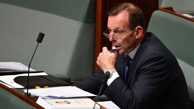 Abbott calls Turnbull's energy policy a 'carbon tax in disguise'