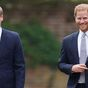 William praised over show of unity to Harry in 'sweet' speech