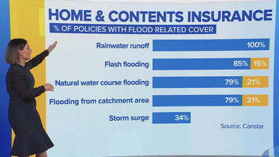 Effie Zahos breaks down types of water damage typically included under home and contents insurance.