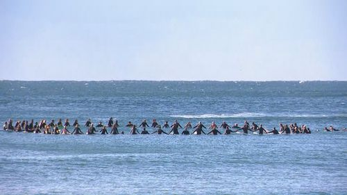 Surfers held a paddle out at Palm Beach in Sydney to honour Mark Sanguinetti, killed in a shark attack.