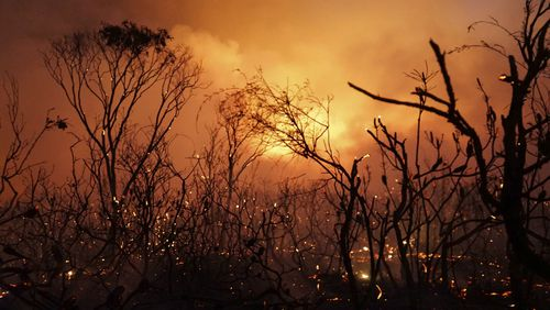 Fire authorities believe the end to more than 110 blazes burning across Queensland is in sight, however the storms could cause possible flash flooding.