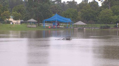 144 millimetres of rain fell in the Gold Coast Hinterland overnight while 50 millimetres fell in Surfers Paradise in just half-an-hour (Supplied).