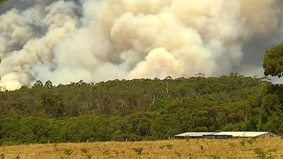 There are fears one home has been destroyed in the blaze. (9NEWS)