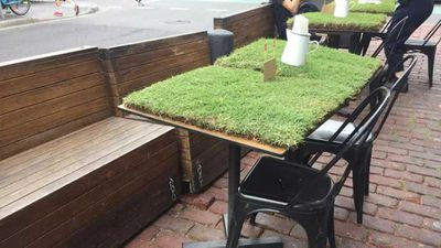 People are outraged by restaurant's grass covered tables
