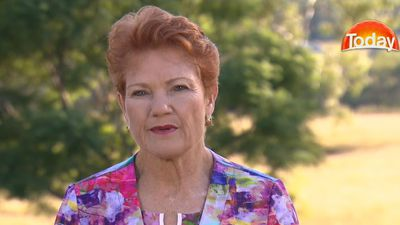 Hanson calls for plebiscite after 'foreigners interfered' with citizenship poll