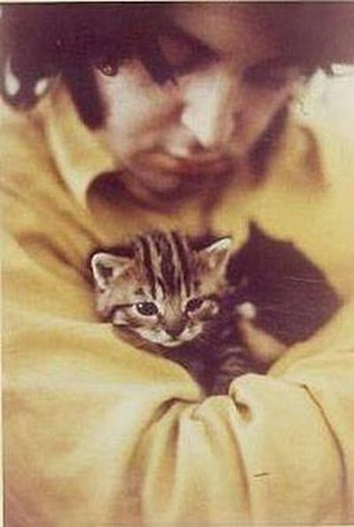 Stars and their cute kitties!<br/><br/>