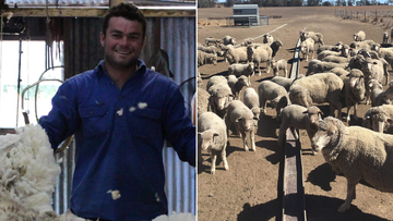 Adrian Brown has watched his family's 1,800-hectare property at Gravesend in northern NSW turn into a parched dust bowl over the past two years.