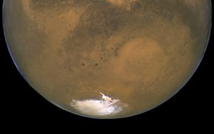 Hidden salty lakes on Mars could contain life, scientists say