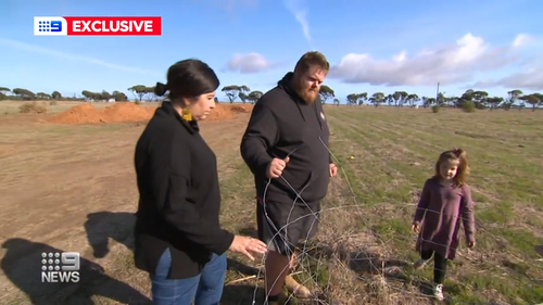 A South Australian family has been dealt a cruel blow, with thieves stealing a $15,000 shed they planned to live and work in.