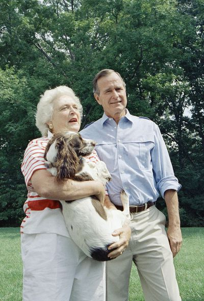 George H.W. Bush and George W. Bush: Spot Fetcher