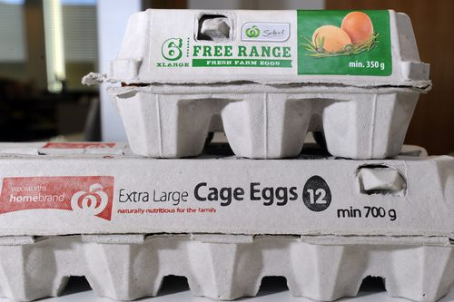 Cage free eggs are now leading the market share in the supermarket after a significant shift in consumer behaviour over the past five years.