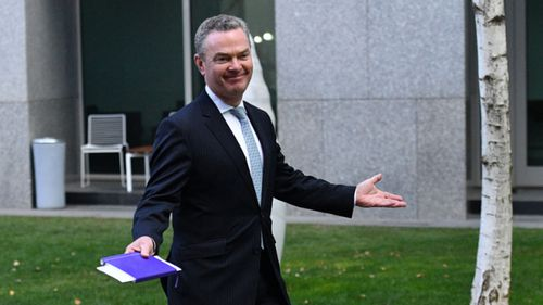 Christopher Pyne throws his hands in the air as speculation swirls about a leadership spill.