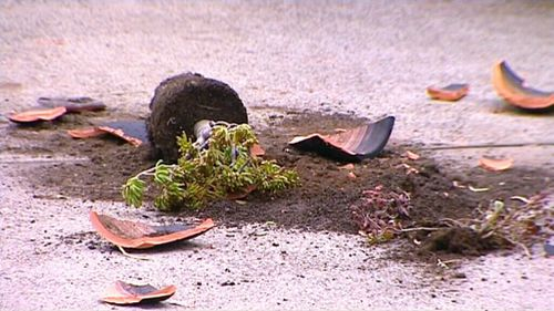 When the gang was refused entry, they lashed out, smashing pot plants. (9NEWS)