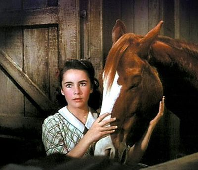 In the most believable movie plot ever conceived, a 12-year-old girl named Velvet (Elizabeth Taylor) saves a horse from the glue factory and trains it for the Grand National steeplechase. When the jockey set to ride the horse doesn't believe he can win, Velvet disguises herself as a man and rides the horse to victory. Rest in peace Elizabeth Taylor.