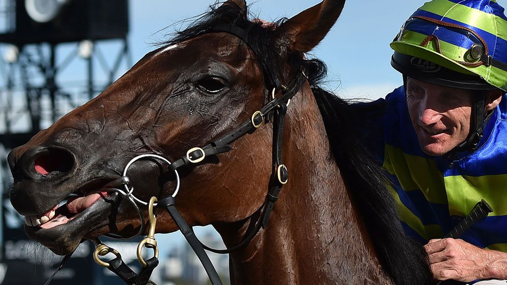 Jameka will start as favourite in the Caulfield Cup. (AAP