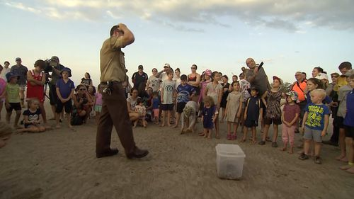 About 3000 people are on the wait list for the special turtle release event. (9NEWS)
